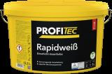 ProfiTec P118+ Rapid Plus, Wunschfarbton, 1l